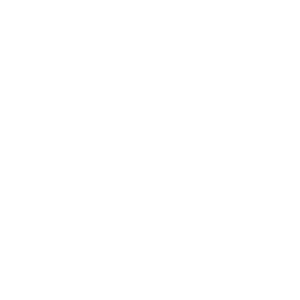 Braintrust Logo White